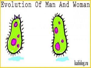 Эволюция мужчины и женщины