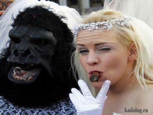 Невесты навеселе