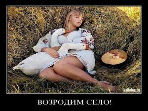 Чисто русские демотиваторы-36