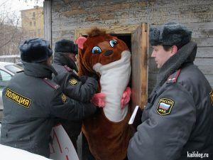 Аресты в костюмах