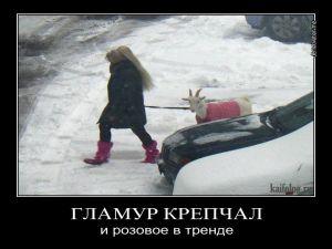 Чисто русские демотиваторы 2012 года