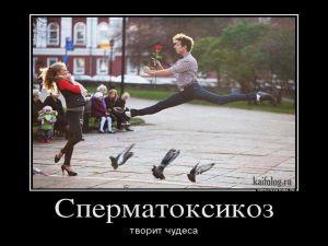 Чисто русские демотиваторы - 157