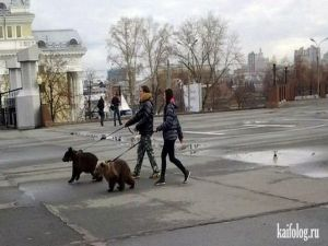 Чисто русские приколы. Подборка - 216