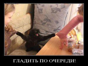 Чисто русские демотиваторы - 178