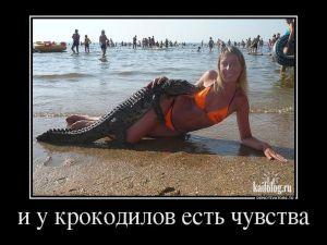 Чисто русские демотиваторы - 185
