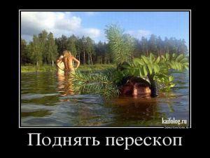 Чисто русские демотиваторы - 194