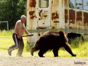 Русские медведи