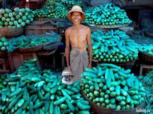 Уличные торговцы из разных стран