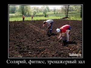 Прикольные русские демотиваторы - 231