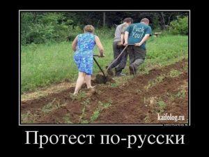 Русские демотиваторы - 255