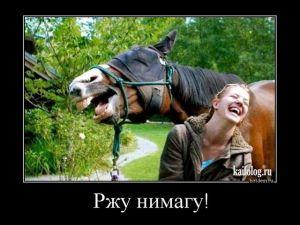 Прикольные демотиваторы недели - 292