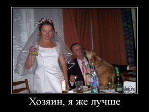Русские демки - 271
