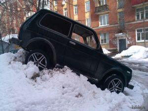 Приколы про парковку