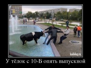 Новые русские демотиваторы