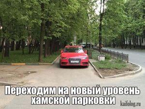 Как паркуются бараны