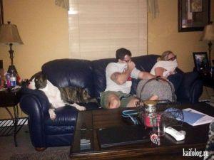 Смешные и странные семейные фото