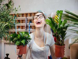 Самые уродливые комнатные растения