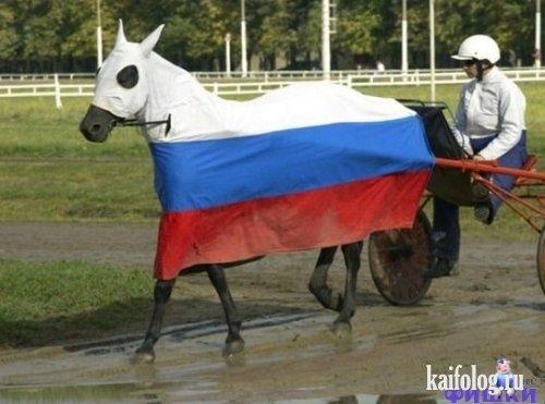 Чисто русские фото. Подборка-1 (50 фото)
