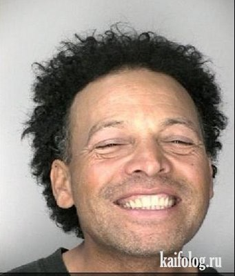 Веселые преступники (16 фото)