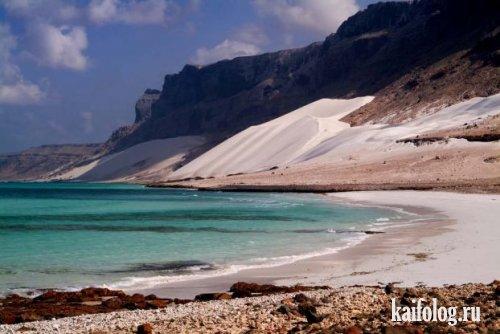 Сокотра. Остров блаженства. (12 фото)