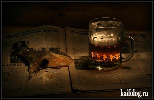 Про водку и пиво (40 фото)