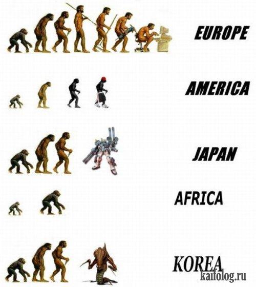 Про эволюцию (20 картинок)