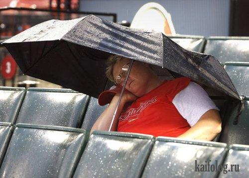 Фотоподборка недели (3 - 9 августа 2009)