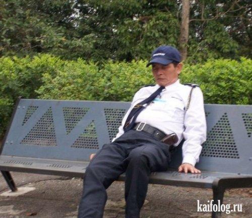 Спящие охранники (12 фото)