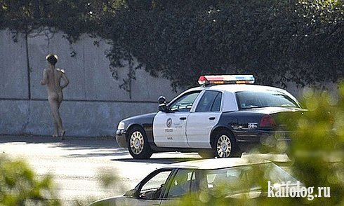 Фотоподборка недели (19 - 25 октября 2009)