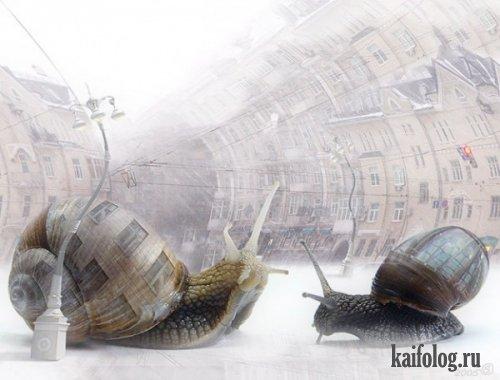 Сюрреализм от Stanislav Odyagailo (22 фото)