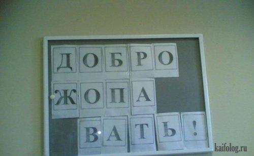 Чисто русские буквоеды (65 фото)
