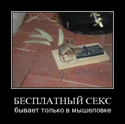 Демотиваторы-25 (45 фото)