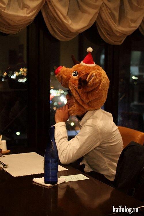 Фотоподборка недели (12 - 27 декабря 2009)