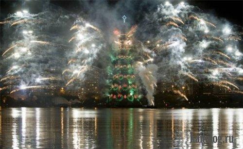 Новогодняя елка. А у вас какая? (40 фото)