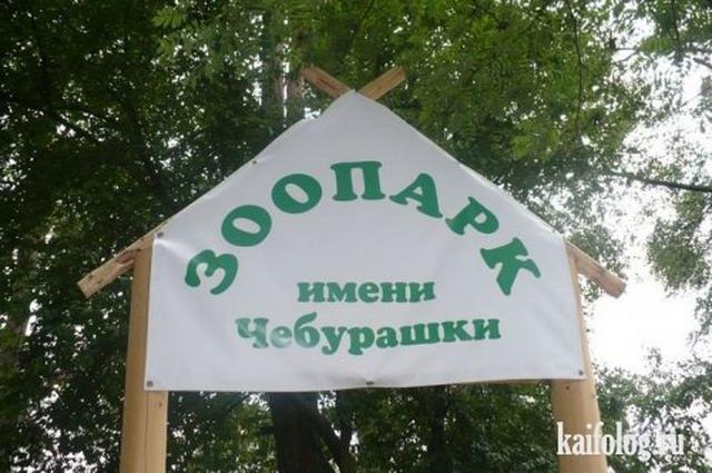 Чисто русские названия (50 фото)
