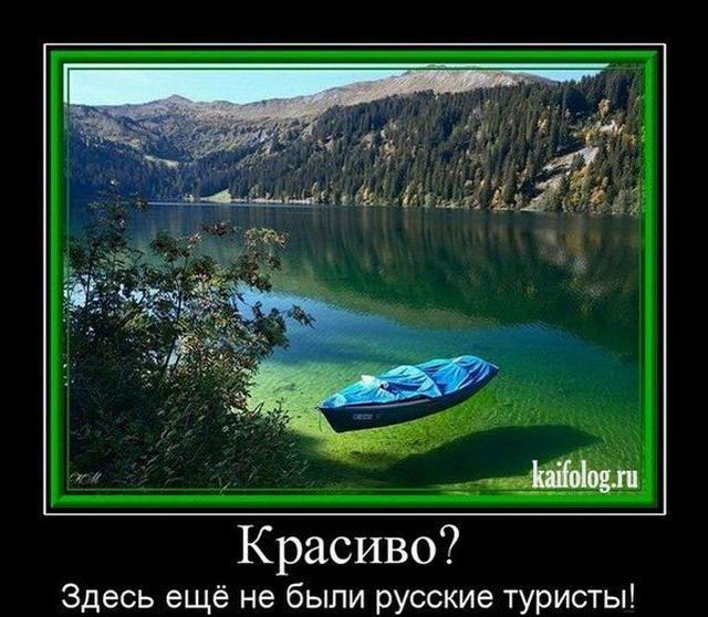 Половина украинской делегации в ПАСЕ не хочет работать, - Арьев - Цензор.НЕТ 3541