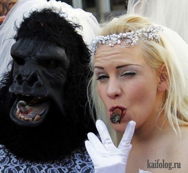 Невесты под градусом (33 фото)