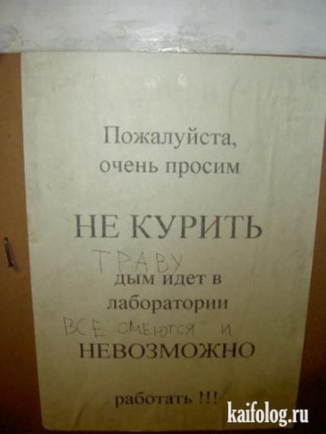 Секс приколы студентов русских 14 фотография