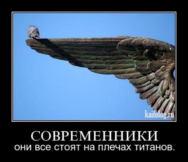 Демотиваторы-53 (40 фото)