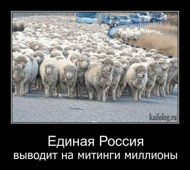 демотиваторы про овец зеленые оттенки акварели