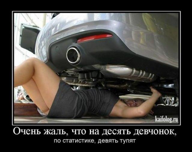 Демотиваторы-55 (30 фото)