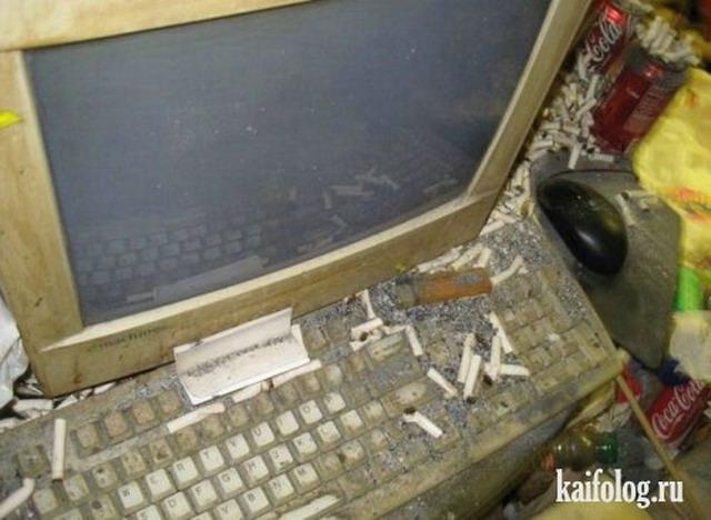 Квартира одного программиста (15 фото)