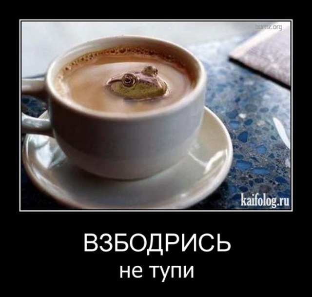 Демотиваторы-58 (30 фото)