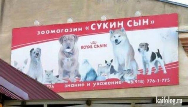 Маразмы по-русски или говорящие назания (50 фото)