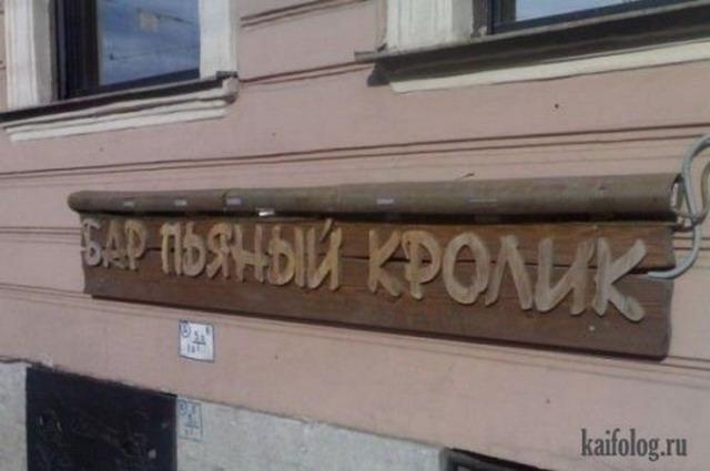 Бары России (20 фото)