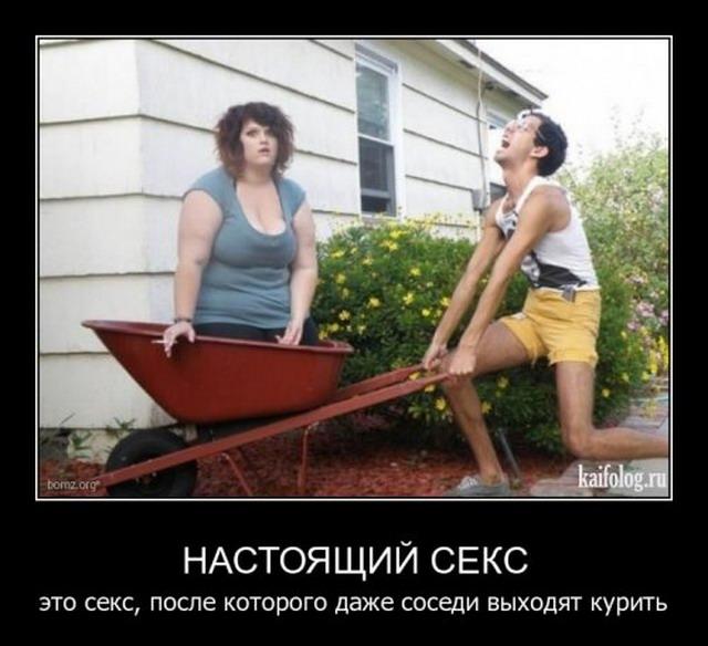 Демотиваторы-61 (30 фото)