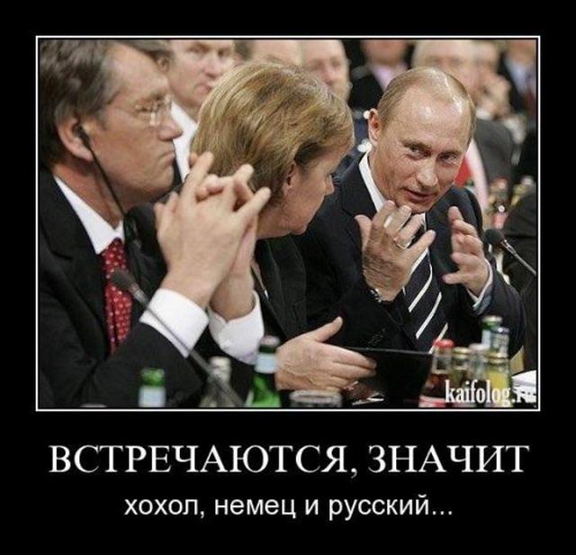 Смотреть демотиваторы по русский