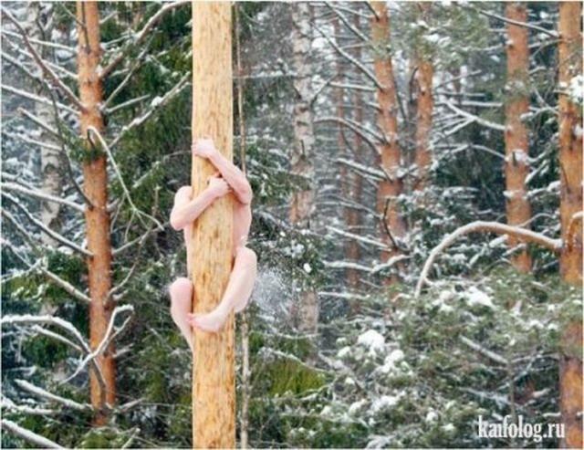 Зимние приколы по-русски (40 фото)