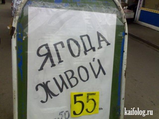 Объявления, надписи и вывески по-русски (40 фото)