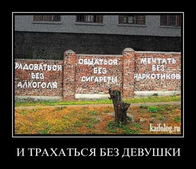Демотиваторы-77 (30 фото)